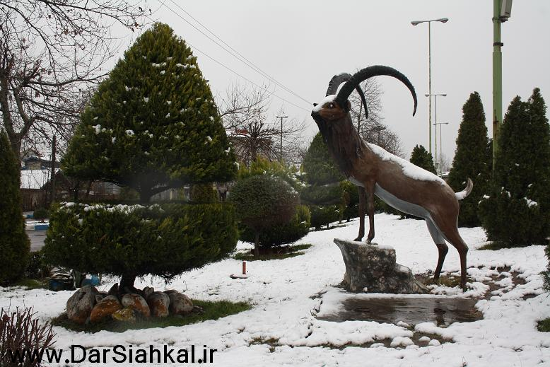 estakhr_pashoran_siahkal (5)