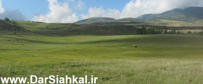 tabiat_siahkal_deylaman_ziba (5)