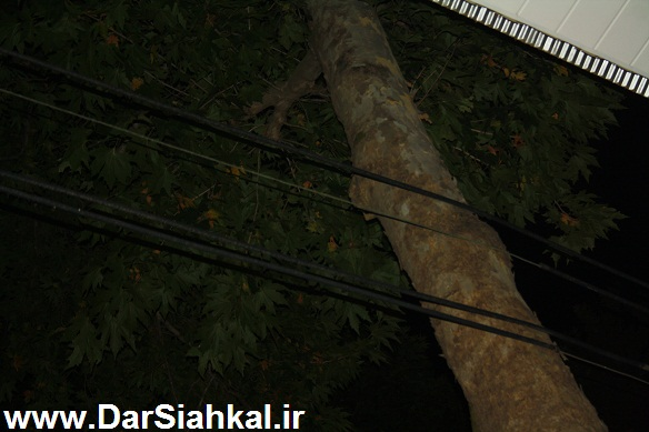 sim_bargh_siahkal (2)
