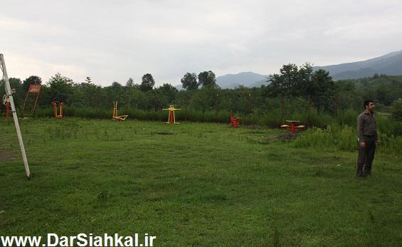 lish_dar_siahkal (4)