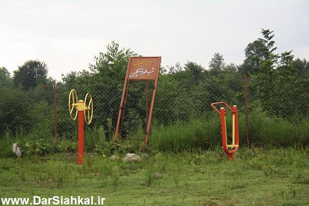 lish_dar_siahkal (6)
