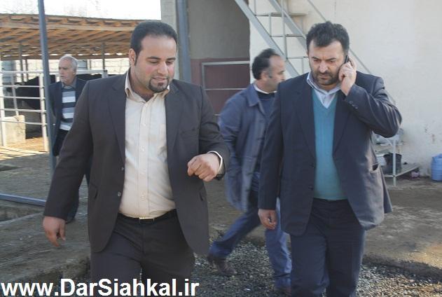 damdari_dar_siahkal (5)