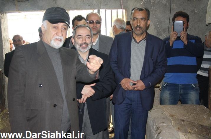 damdari_dar_siahkal (9)