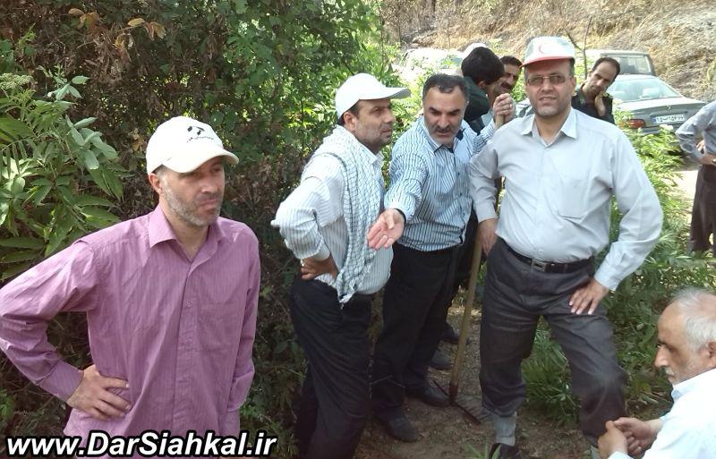 atashsozi_jangal_dar_siahkal (4)