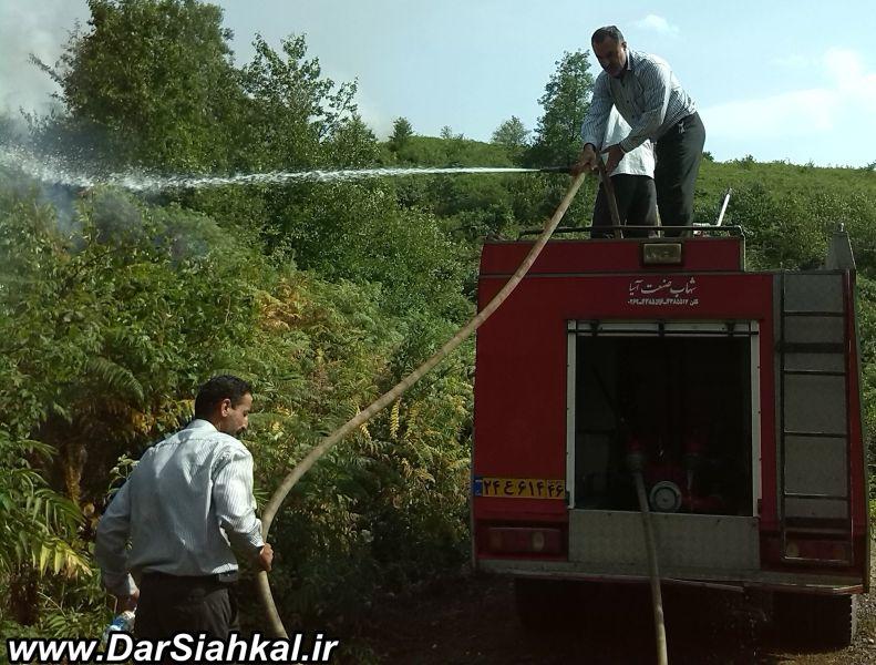 atashsozi_jangal_dar_siahkal (6)