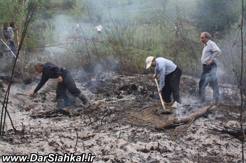 atashsozi_bagh_chay_dar_siahkal (13)