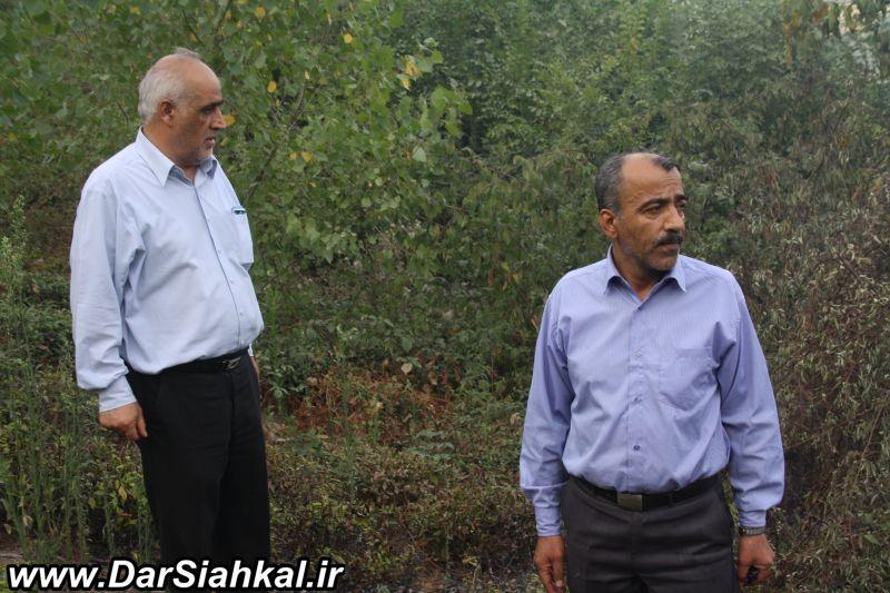 atashsozi_bagh_chay_dar_siahkal (16)