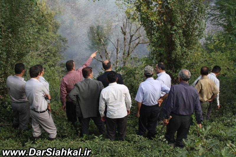 atashsozi_bagh_chay_dar_siahkal (5)