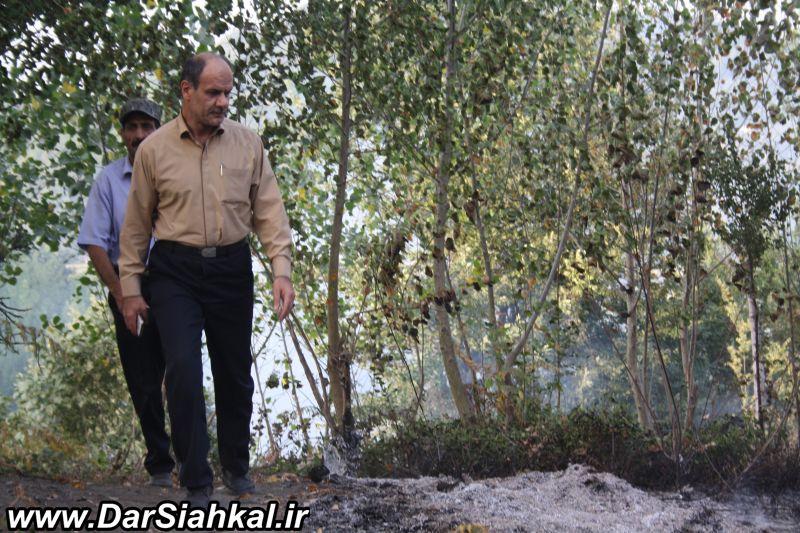 atashsozi_bagh_chay_dar_siahkal (6)