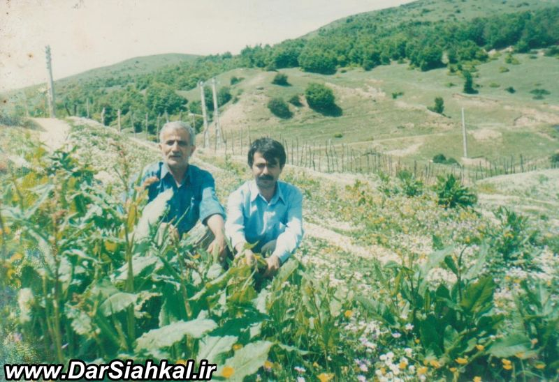 biaras_janbaz_dar_siahkal (9)