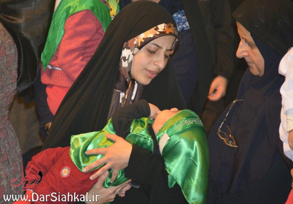 shirkharegan_dar_siahkal (18)