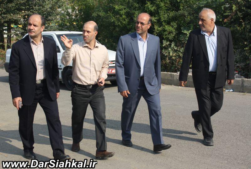 shakori_dar_siahkal (5)