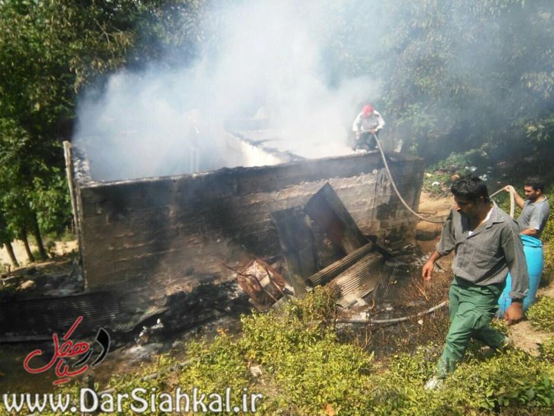 آتش سوزی خانه (۵)