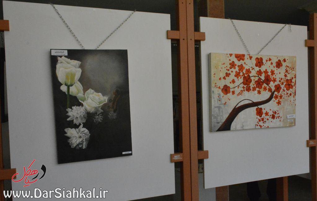 نمایشگاه نقاشی طرحی نو سیاهکل (۵)