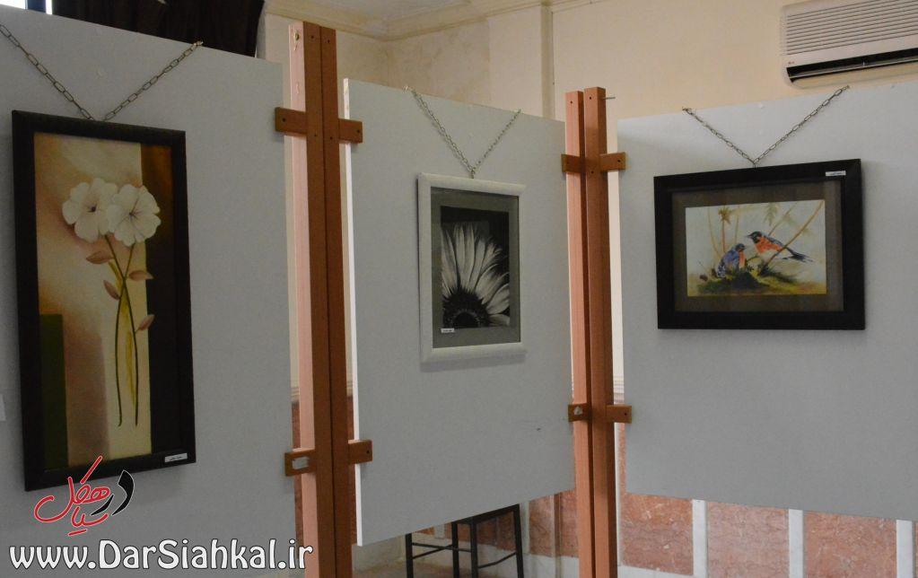 نمایشگاه نقاشی طرحی نو سیاهکل (۷)